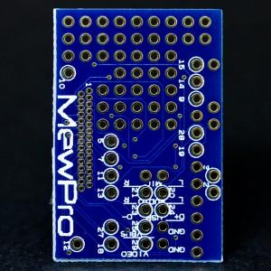 MewPro board (back side)